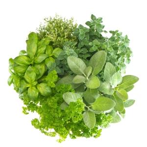 Herbs_Bouquet_shutterstock_107066849 (2)